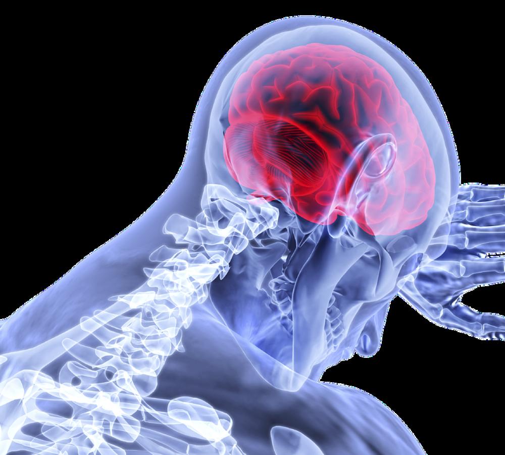 Νόσος του κινητικού νευρώνα: Παθολογία και δυνατότητες διαχείρισης